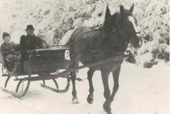 Pferdeschlittenfahrt (Bauer Krauß)
